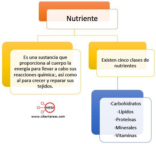 concepto de nutriente clases de nutrientes