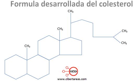 formula desarrollada del colesterol