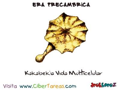 Kakabekia Vida Multicelular - Era Precambrica