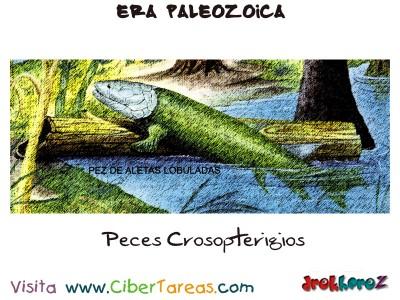 Peces Crosopterigios - Era Paleozoica Prehistoria