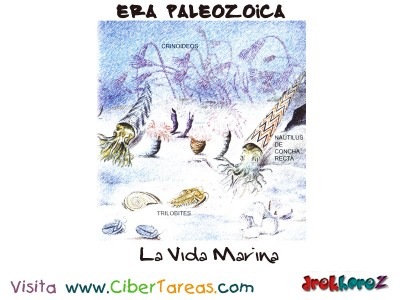 Vida Marina - Era Paleozoica Prehistoria
