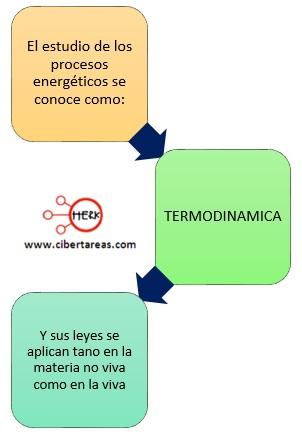 termodinamica concepto