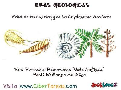 Era Primaria Paleozoica, edad de los anfibios criptogamas vasculares - Eras Geologicas