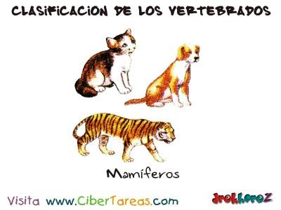 Mamiferos - Clasificacion de los Vertebrados