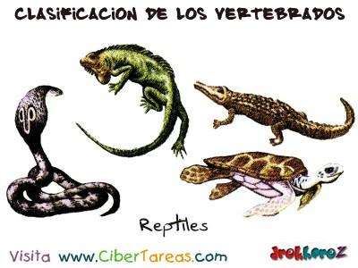 Reptiles - Clasificacion de los Vertebrados