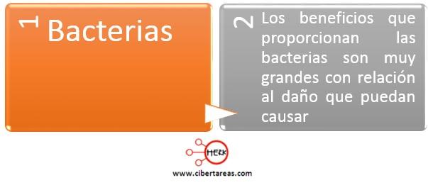 beneficios de las bacterias