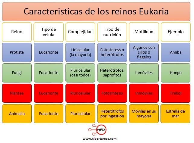 caracteristicas de los reinos eukaria