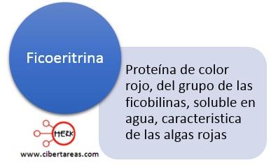 ficoeritrina concepto definicion