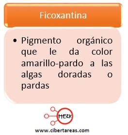ficoxantina definicion concepto