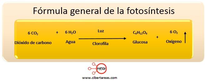 formula general de la fotosintesis