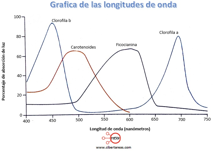 grafica de las longitudes de onda