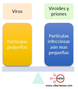 virus viruides y priones concepto