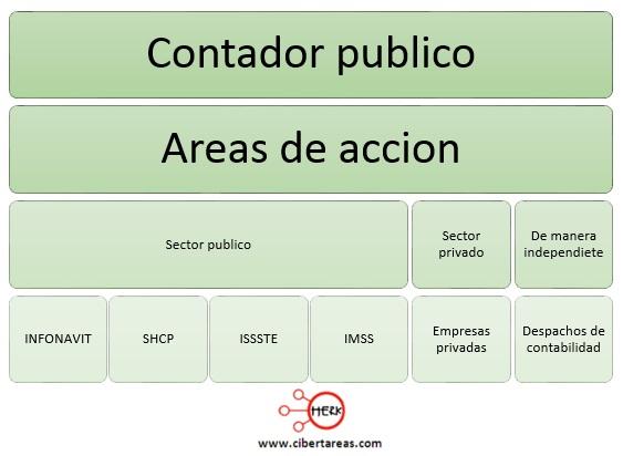 areas de accion de un contador publico o licenciado en contaduria
