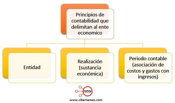 principios de contabilidad que delimitan al ente economico