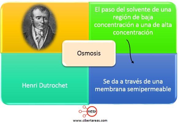 concepto de osmosis quimica