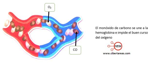 efectos de monoxido de carbono quimica 2