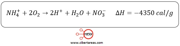 nitrificacion ecuacion quimica