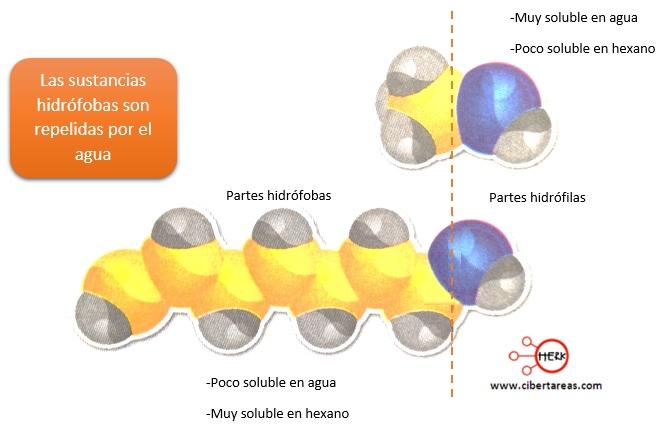 sustancias hidrofobas quimica