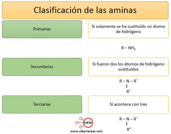 clasificacion de las aminas