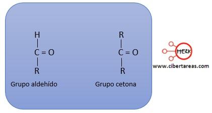 estructura carbohidrato grupo aldehido grupo cetona