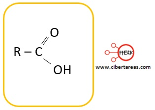 estructura del acido carboxilicos ejemplo