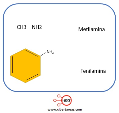 estructura metilamina fenilamina aminas quimica