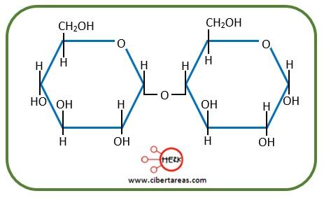 estructura molecula maltosa