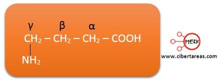 nomenclatura de los acidos carboxilicos ejemplo