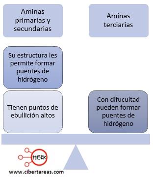 propiedades fisicas y quimiacas de las aminas