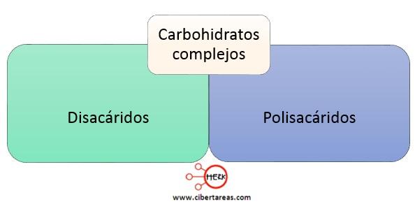 tipos de carbohidratos complejos