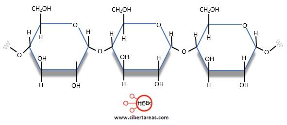 estructura de la amilosa poli quimica