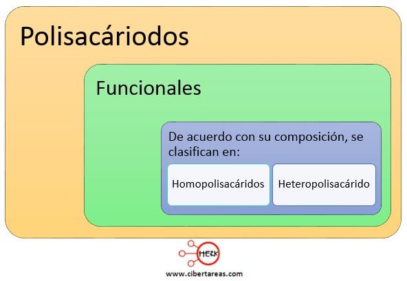 mapa conceptual polisacaridos funcionales