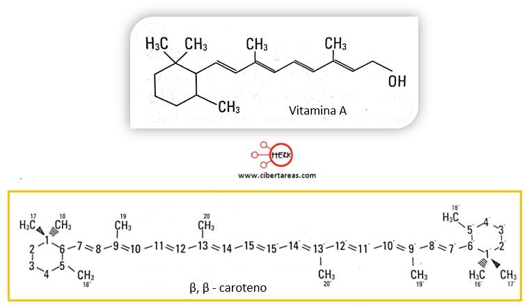 estructura vitamina A caroteno
