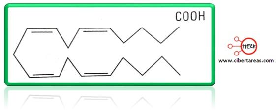 molecula de la prostaglandina