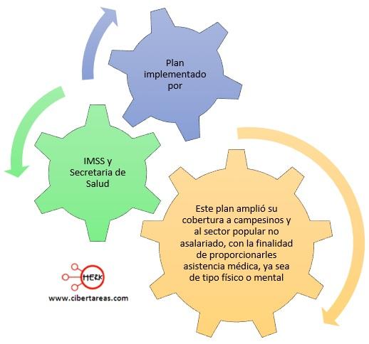 plan implementado por el imss y secretaria de salud
