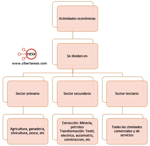 clasificacion-de-las-actividades-economicas