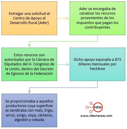 proceso-para-la-entrega-de-apoyos-de-procampo