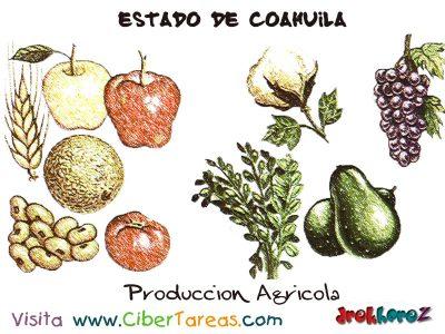 produccion-agricola-estado-de-coahuila