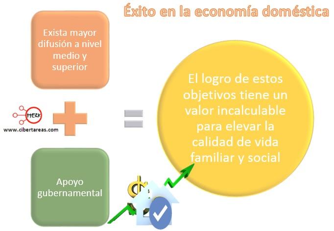 como-tener-exito-en-la-economia-domestica