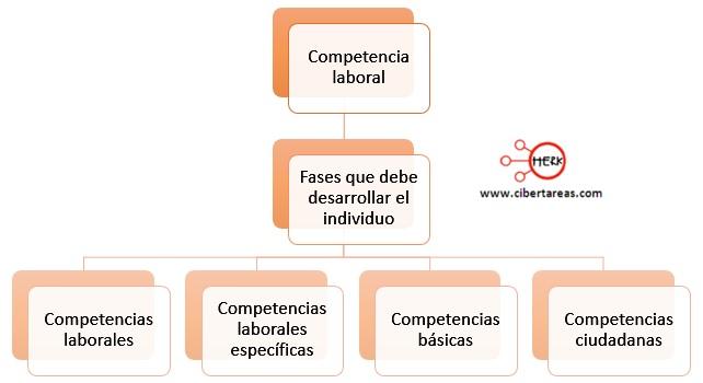 fases-de-las-competencias-laborales