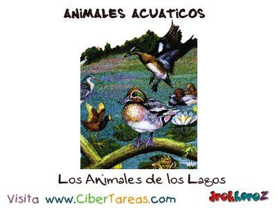 Los Animales de los Lagos – Animales Acuáticos 0