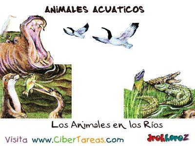 Los Animales de los Ríos – Animales Acuáticos 0