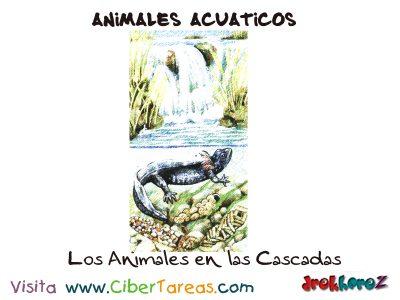 Animales de las Cascadas – Animales Acuáticos 0