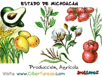 Producción Agrícola – Estado de Michoacán 0