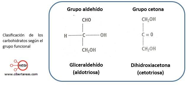 Monosacáridos – Temas Selectos de Química 2 1