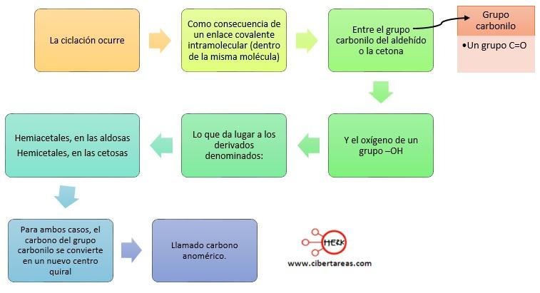Estructura cíclicas de los azucares: anómeros – Temas Selectos de Química 2 0