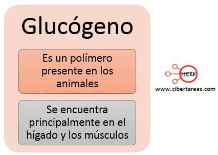 Glucógeno – Temas Selectos de Química 2 0