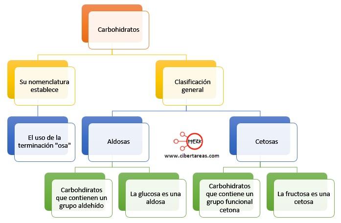 Estructura de los carbohidratos – Temas Selectos de Química 2 4