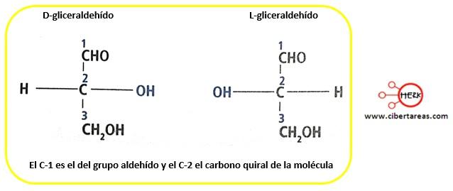 Isomería – Temas Selectos de Química 2 10