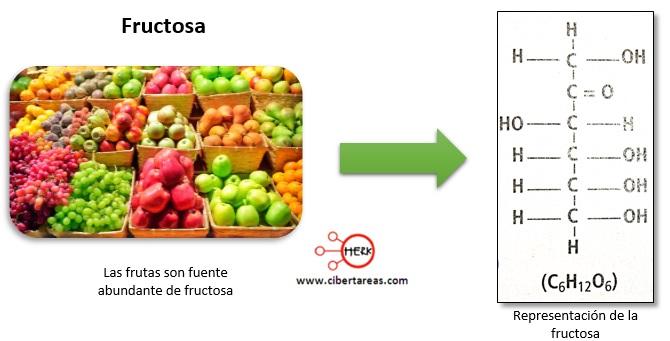 Estructura de los carbohidratos – Temas Selectos de Química 2 3
